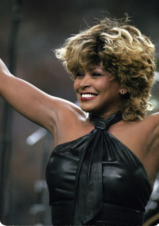 Tina Turner - Gallery Colection